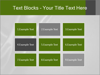 0000080552 PowerPoint Templates - Slide 68