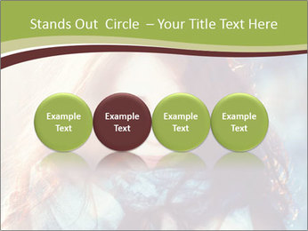 0000080557 PowerPoint Templates - Slide 76