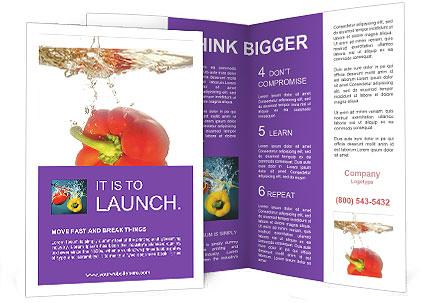 0000080558 Brochure Template