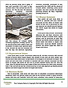 0000080561 Word Templates - Page 4