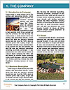 0000080568 Word Templates - Page 3