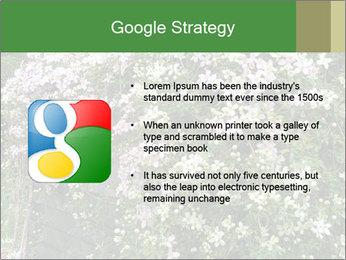 0000080569 PowerPoint Template - Slide 10