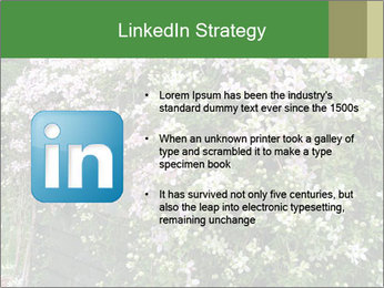 0000080569 PowerPoint Template - Slide 12