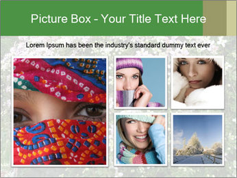 0000080569 PowerPoint Template - Slide 19