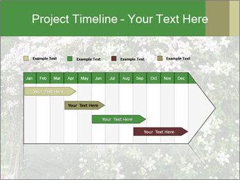 0000080569 PowerPoint Template - Slide 25