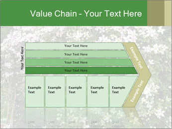 0000080569 PowerPoint Template - Slide 27
