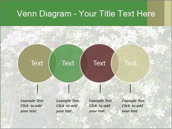 0000080569 PowerPoint Template - Slide 32