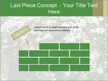 0000080569 PowerPoint Template - Slide 46