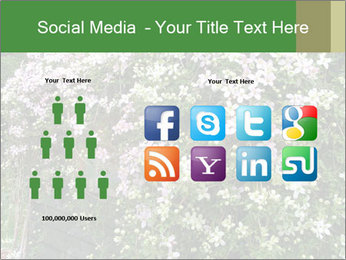 0000080569 PowerPoint Template - Slide 5
