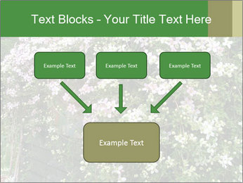 0000080569 PowerPoint Template - Slide 70
