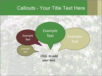0000080569 PowerPoint Template - Slide 73