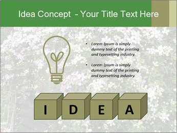 0000080569 PowerPoint Template - Slide 80