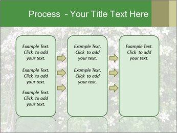 0000080569 PowerPoint Template - Slide 86