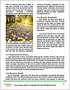 0000080572 Word Template - Page 4