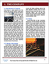0000080573 Word Template - Page 3