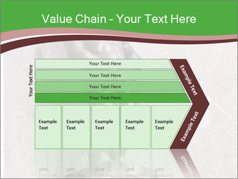 0000080579 PowerPoint Template - Slide 27