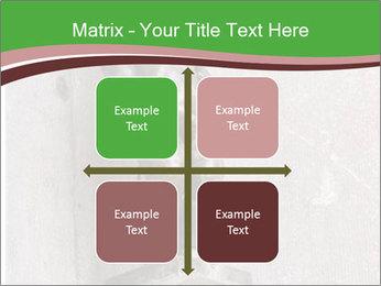 0000080579 PowerPoint Template - Slide 37