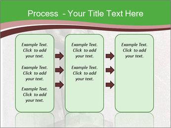 0000080579 PowerPoint Template - Slide 86