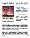 0000080586 Word Template - Page 4
