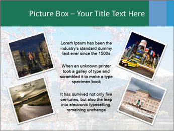 0000080588 PowerPoint Template - Slide 24