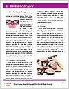 0000080589 Word Templates - Page 3