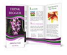 0000080591 Brochure Templates