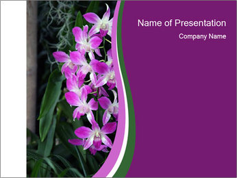 0000080591 PowerPoint Template - Slide 1