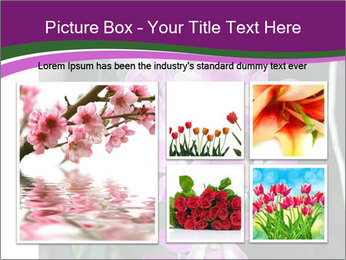 0000080591 PowerPoint Templates - Slide 19