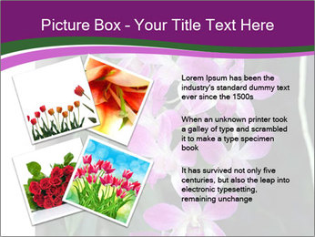 0000080591 PowerPoint Template - Slide 23