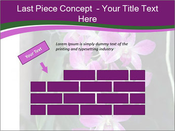 0000080591 PowerPoint Templates - Slide 46