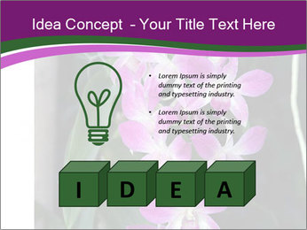 0000080591 PowerPoint Template - Slide 80