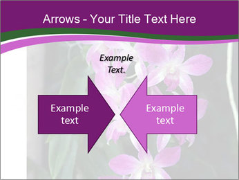 0000080591 PowerPoint Templates - Slide 90