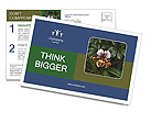 0000080592 Postcard Template