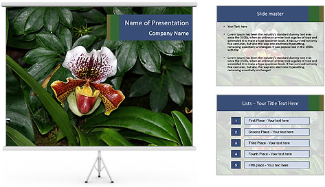 0000080592 PowerPoint Template