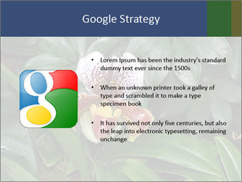 0000080592 PowerPoint Template - Slide 10