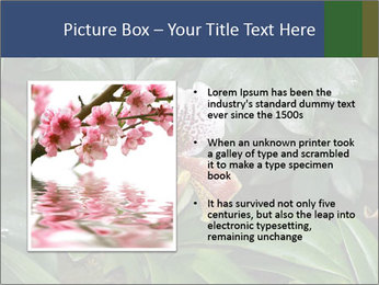 0000080592 PowerPoint Template - Slide 13