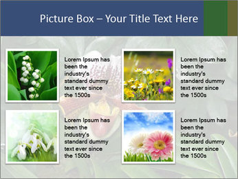 0000080592 PowerPoint Template - Slide 14