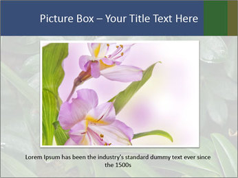 0000080592 PowerPoint Template - Slide 15
