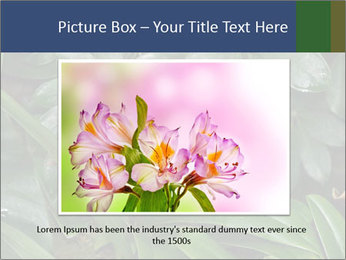 0000080592 PowerPoint Template - Slide 16