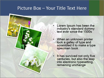 0000080592 PowerPoint Template - Slide 17