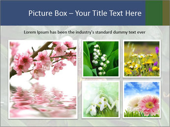0000080592 PowerPoint Template - Slide 19