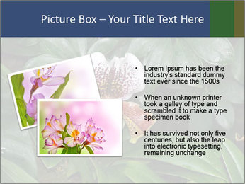0000080592 PowerPoint Template - Slide 20