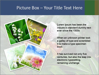 0000080592 PowerPoint Template - Slide 23