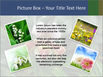 0000080592 PowerPoint Template - Slide 24