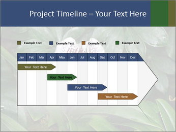 0000080592 PowerPoint Template - Slide 25
