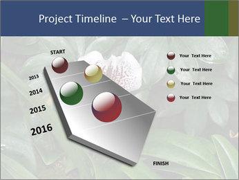 0000080592 PowerPoint Template - Slide 26