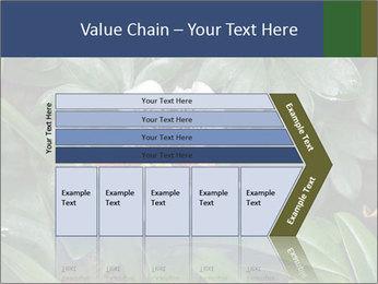 0000080592 PowerPoint Templates - Slide 27