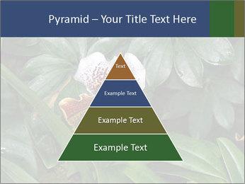 0000080592 PowerPoint Templates - Slide 30