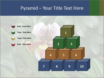 0000080592 PowerPoint Templates - Slide 31