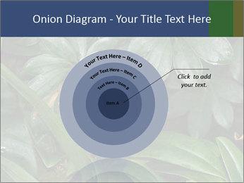 0000080592 PowerPoint Templates - Slide 61